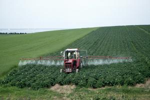 Значение пестицидов в современном с/х производстве