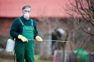 Что такое инсектициды?